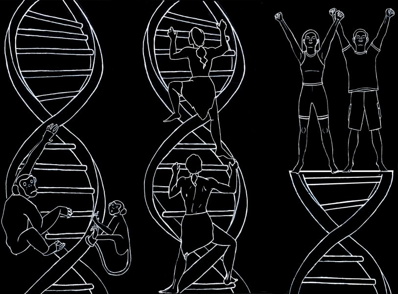 Evolutionary DNA