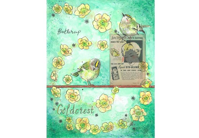 'Goldcrest'