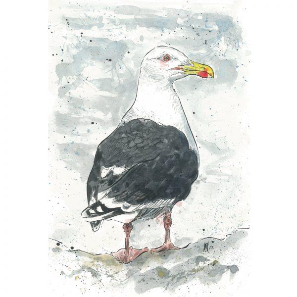 'Great Black Backed Gull'