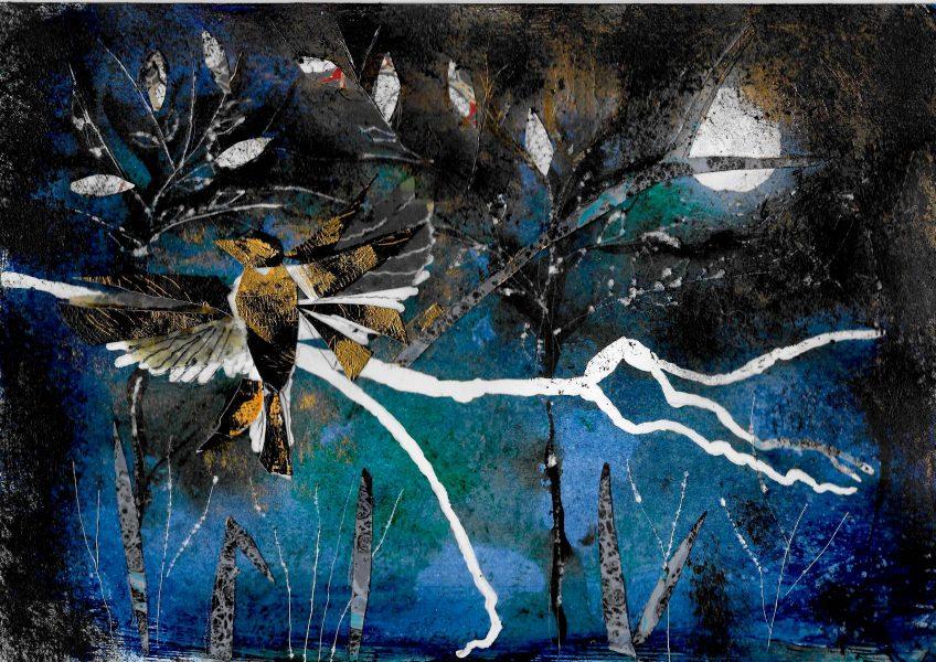 LOIUSA ALBANI Night bird