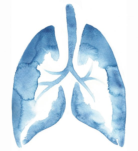 Medical - Pharmaceutical - Health - LUNGS