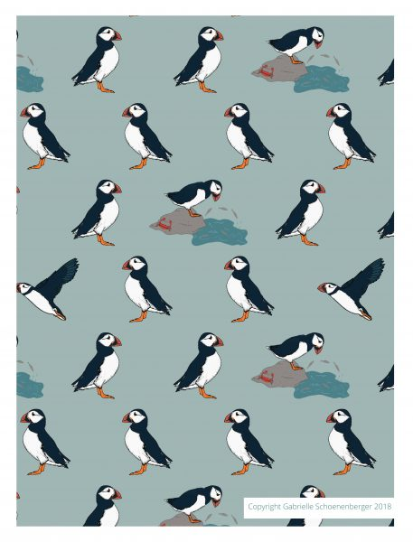 Plucky Puffins