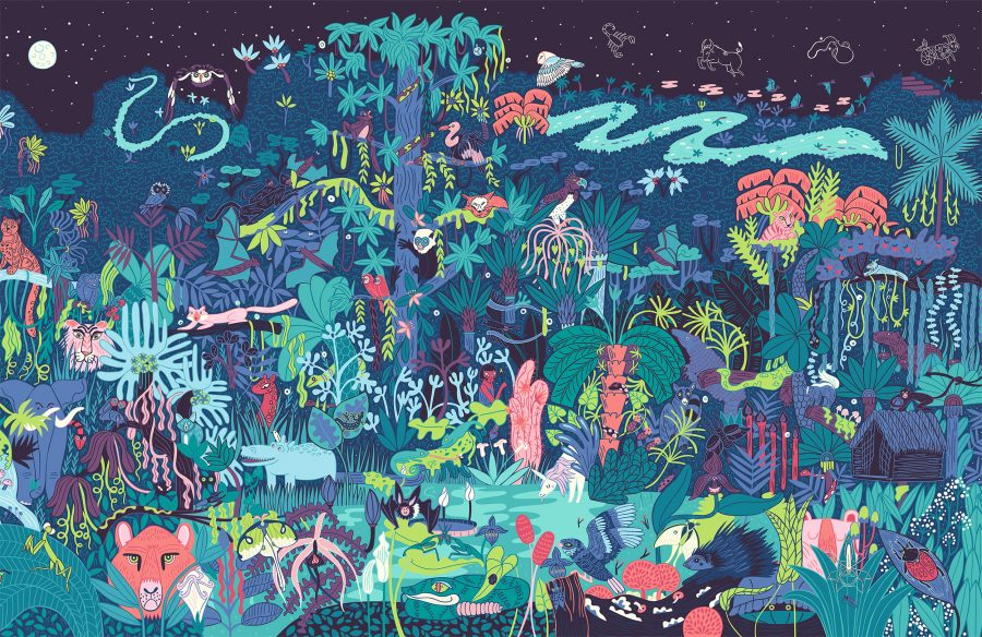 Victionary_day_and_Night_Rainforest_PMcGloin