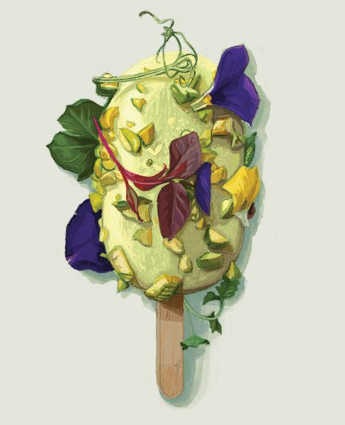 Wild Food Café Pistachio Dessert Lolly