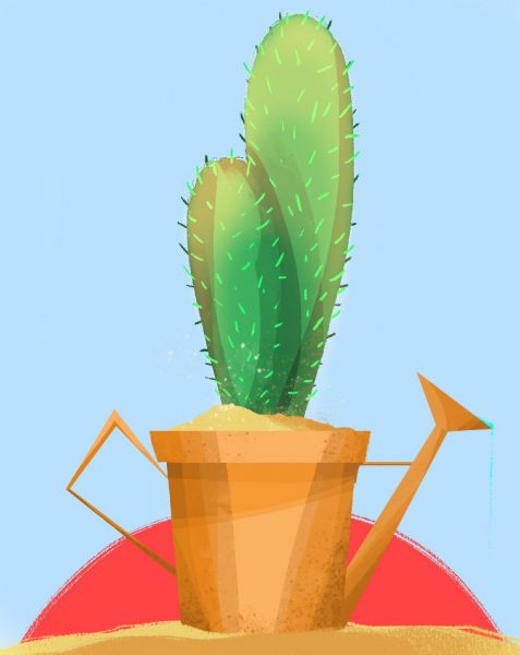 Cactus watering can