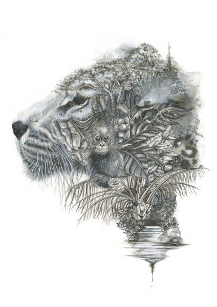 21st Century Problems - Deforestation