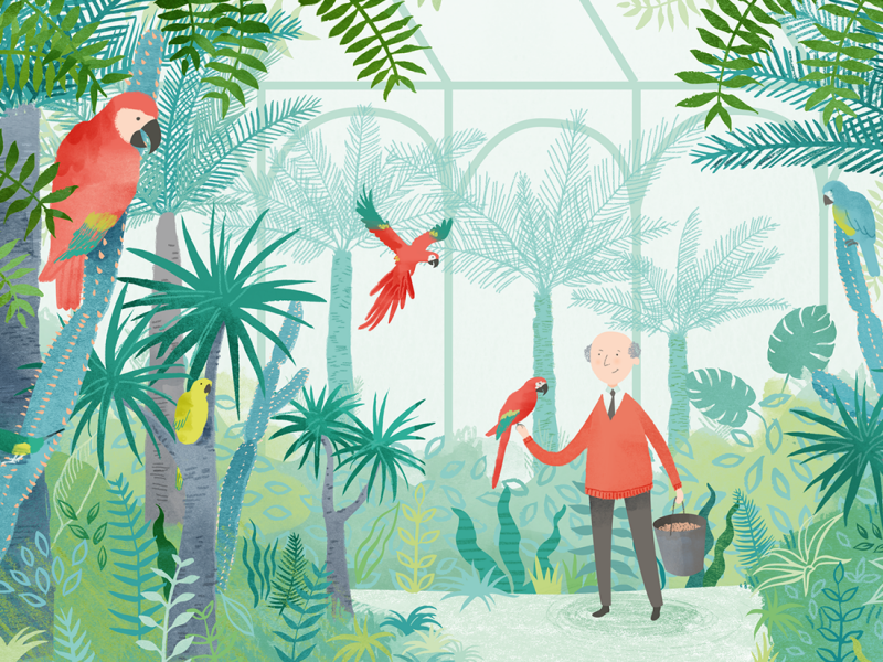 Mr Langdon's Parrots