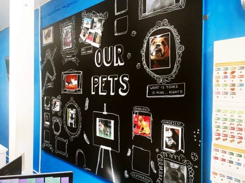 Our pets wall