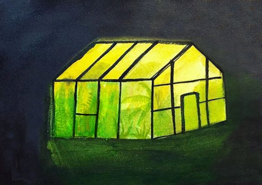 The Greenhouse at Night