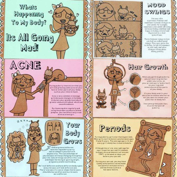Tennage Girls Understanding Puberty Small Book