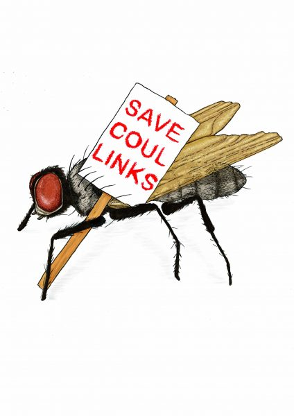 SAVE COUL LINKS 1