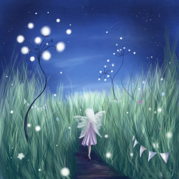 Fairy Night