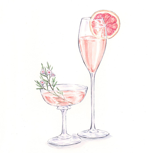 Watercolor painting of pink cocktails / drinks