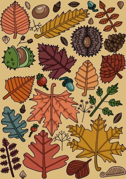 Autumn Botanics