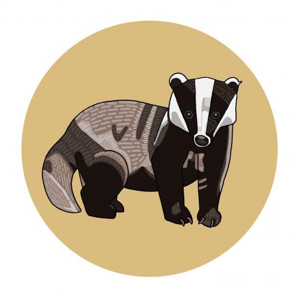 Autumnal Animals: Badger