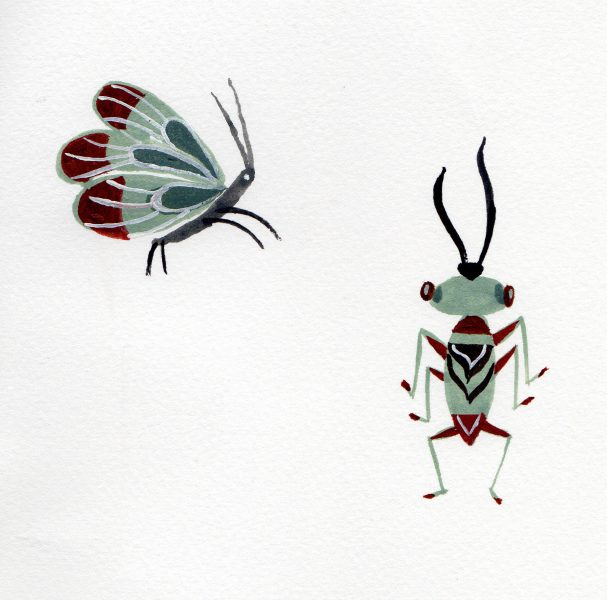 Bugs Summer