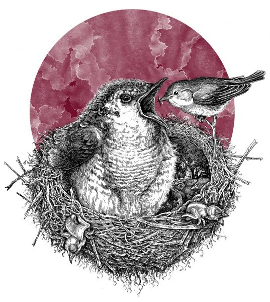 New Scientist- Cuckoo in the next