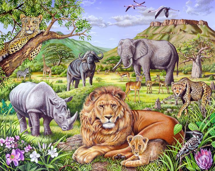 Saharan Animal Gathering