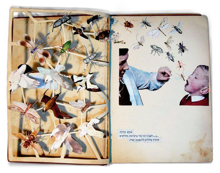 bugs_book