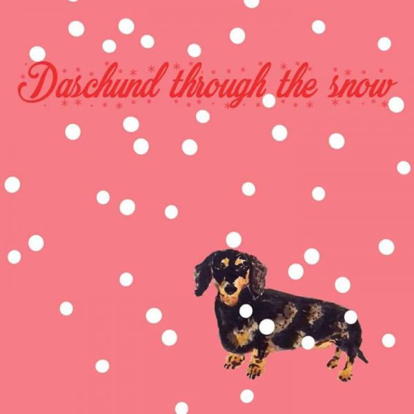 dashund through the snow