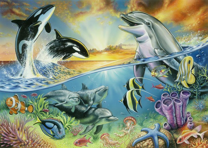 ocean pals