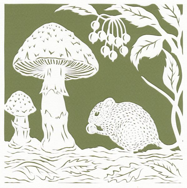 Mouse and Mushrooms