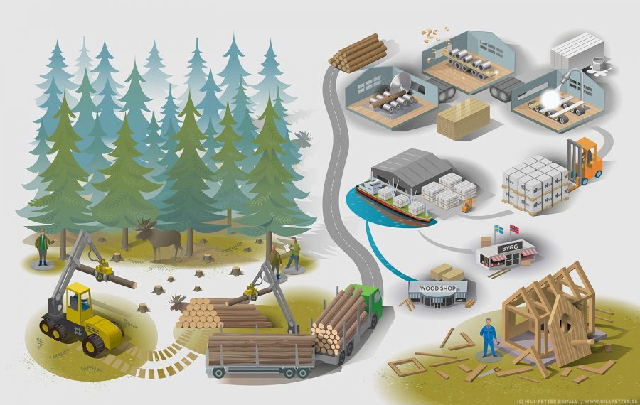 Norrskogen infographic flowchart showing the production, processing and transportation of wood products - from the forest owner to the consumer. Client: Norrskogen