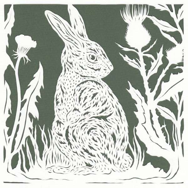 Rabbit and Thistles