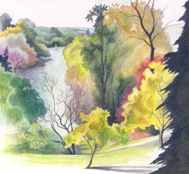Richmond river in Autumn