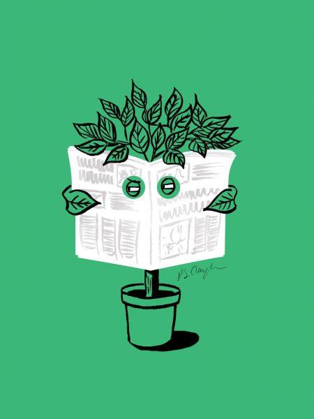 clandentine-plant
