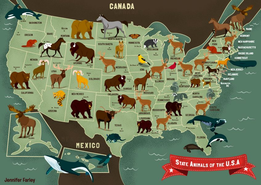 State Animals Of The USA Map