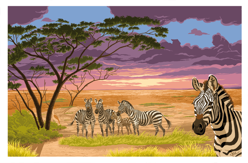 Zebras in Kenya, picture game