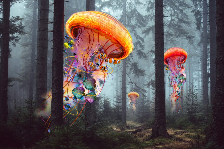 Electric Jellyfish Worlds in a Forest