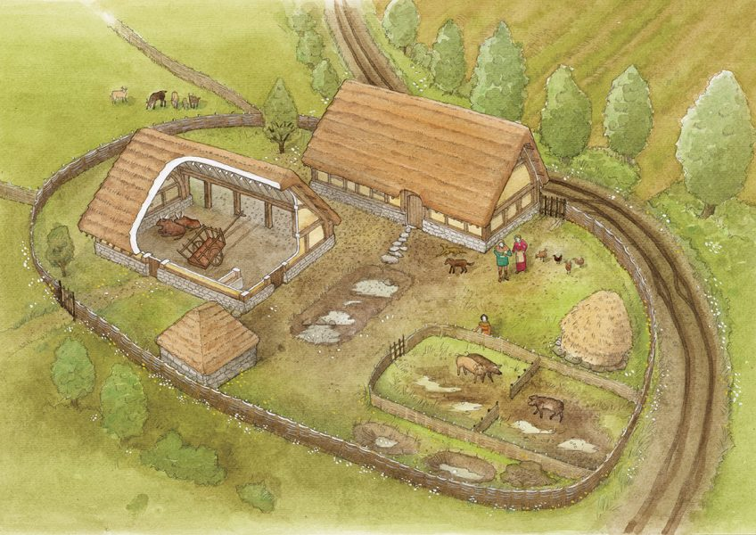 Archaeological reconstruction illustration of a 14th century farmstead in North Somerset, with partial cutaway. #archaeology. www.jennieanderson.co.uk