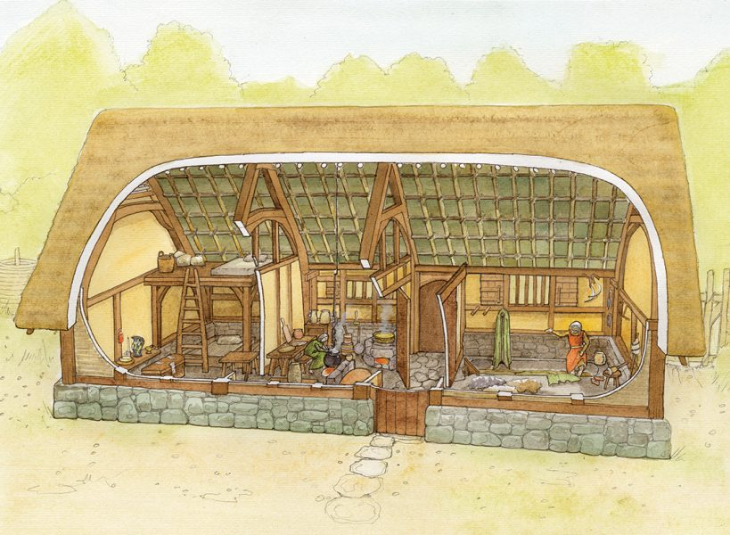 Archaeological cutaway reconstruction illustration of a 14th century farmhouse on North Somerset, showing the interior. #archaeology. www.jennieanderson.co.uk