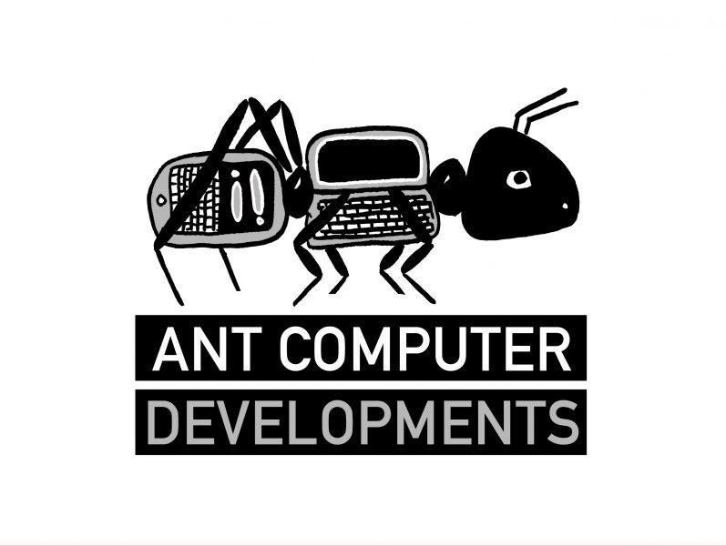 Ant Computer Developments