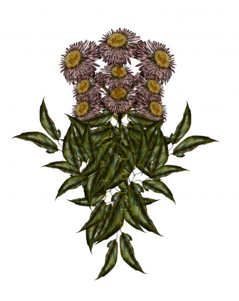 Wildflower Bouquet Victoria Watt