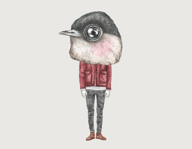 Blackcap Bird