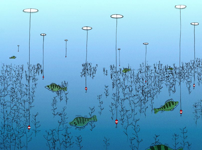 Overfishing Editorial