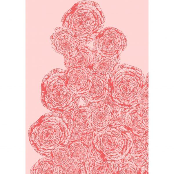 Climbing Roses,
