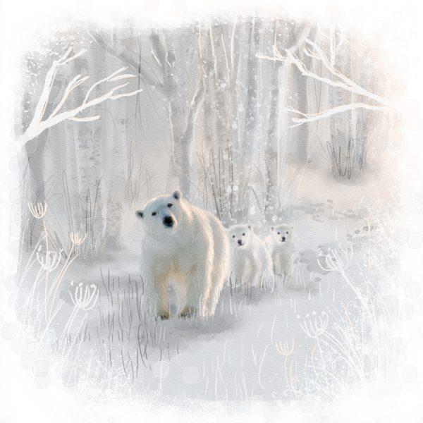 Winter polar bear family