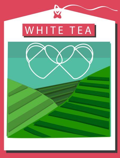 TEA PLANTATION POSTER ALT _01