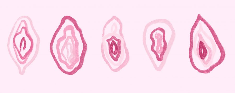 Vaginas: Illustration for VERVE blog post 'Please Yourself'