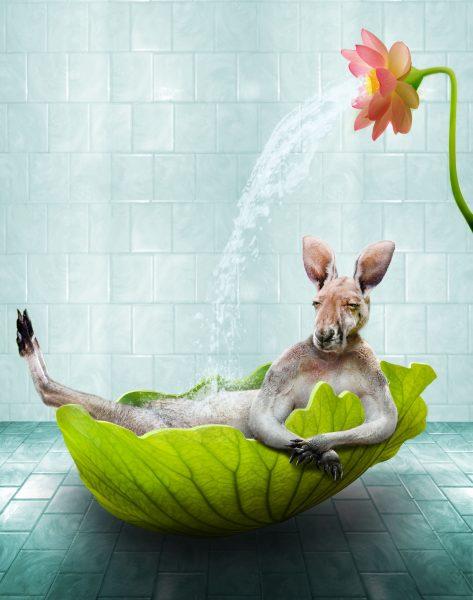 Summer Bath