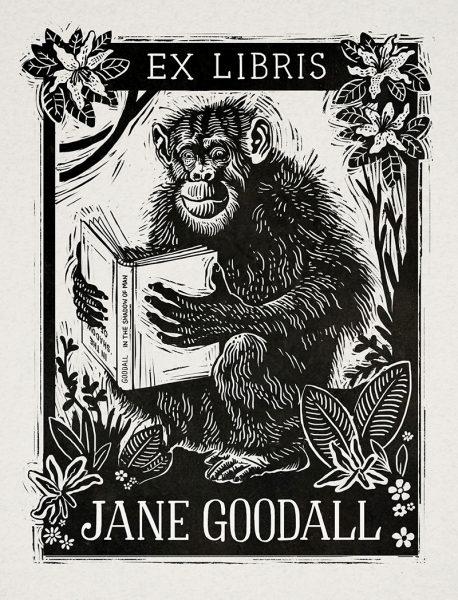 Jane_Goodall_web