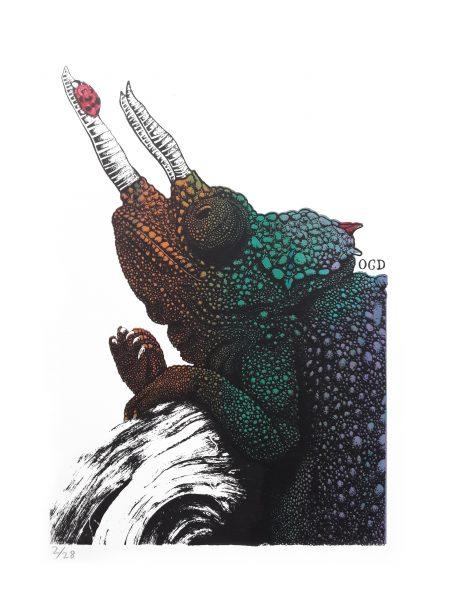 Chameleon Screenprint - Ladybird