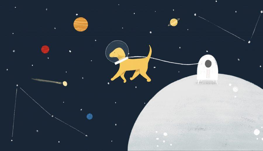 Lyra the Cockapoo on the Moon!
