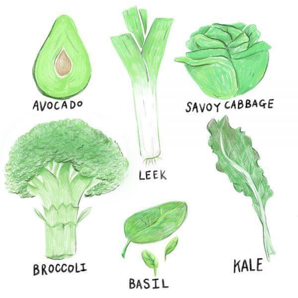 green kitchen favs