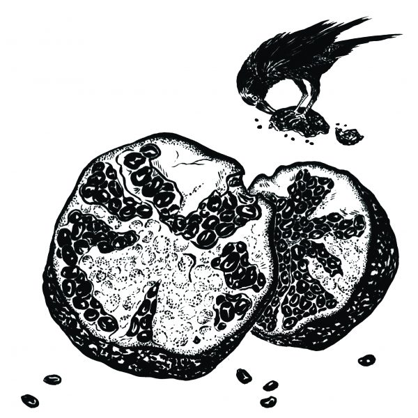 Pomegranate and Crow