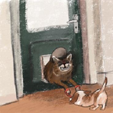 Cat_Door_Stuck